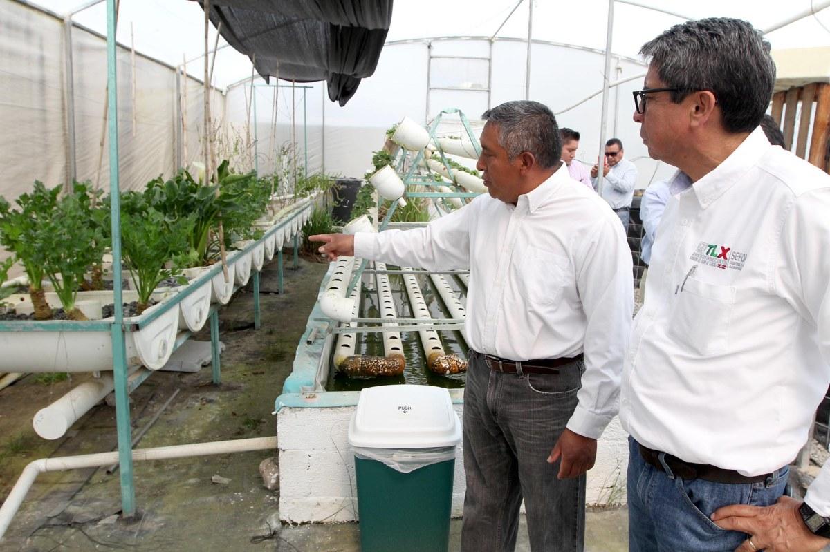 Impulsa sefoa producción acuícola para la temporada decuaresma