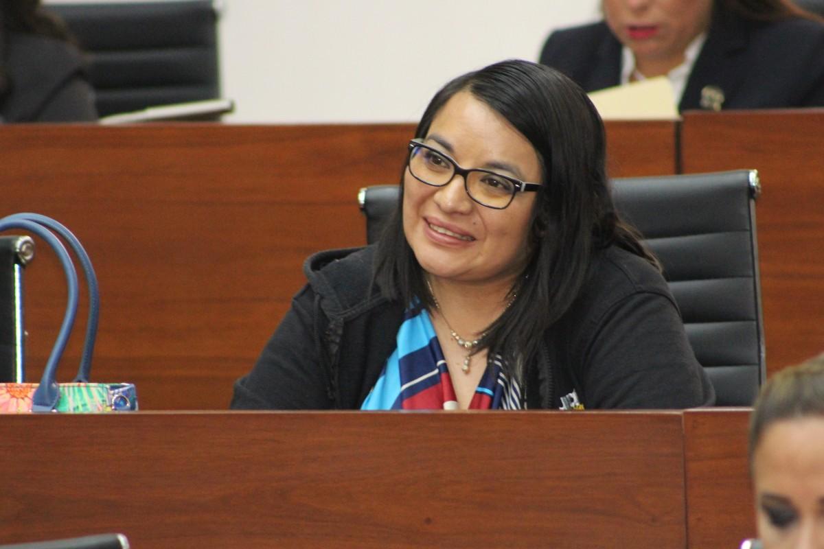 LAURA FLORES LOZANO, NUEVA COORDINADORA DEL GRUPO PARLAMENTARIO DEL PRD EN ELCONGRESO